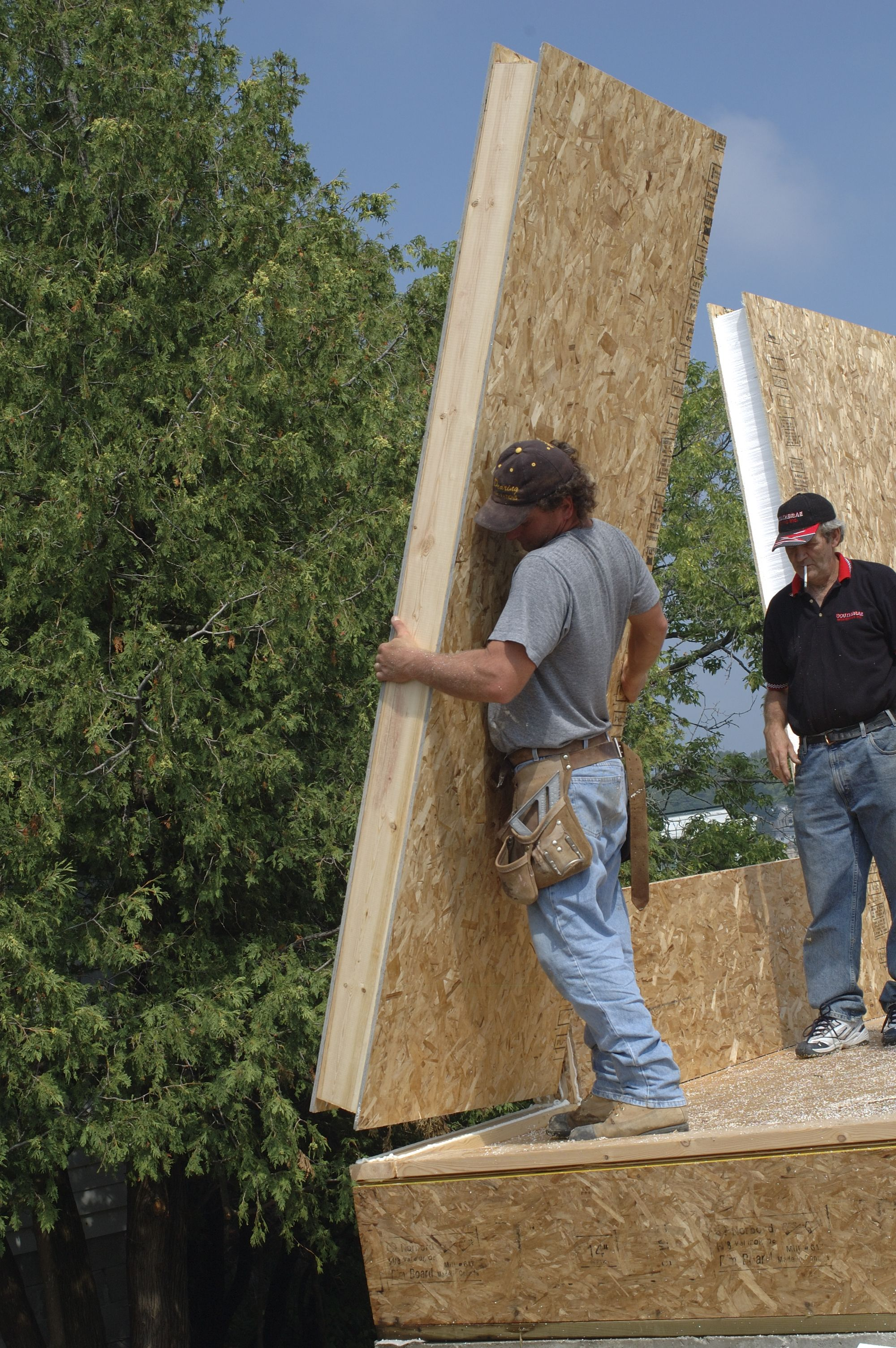 Sips Panels A Better Way To Build With This Foam Board Product Sips Panels Container House Sip House