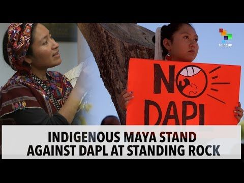 Mayan Elders Go to Standing Rock to Show Solidarity & Give Thanks 'For Lighting a Path for Our People'
