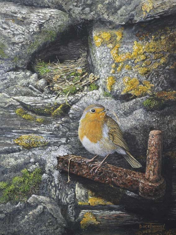 """The Nest Builder - Robin at Home"" by Dick Twinney of Cornwall, UK, lover of nature & talented, self-taught artist, b.1943"