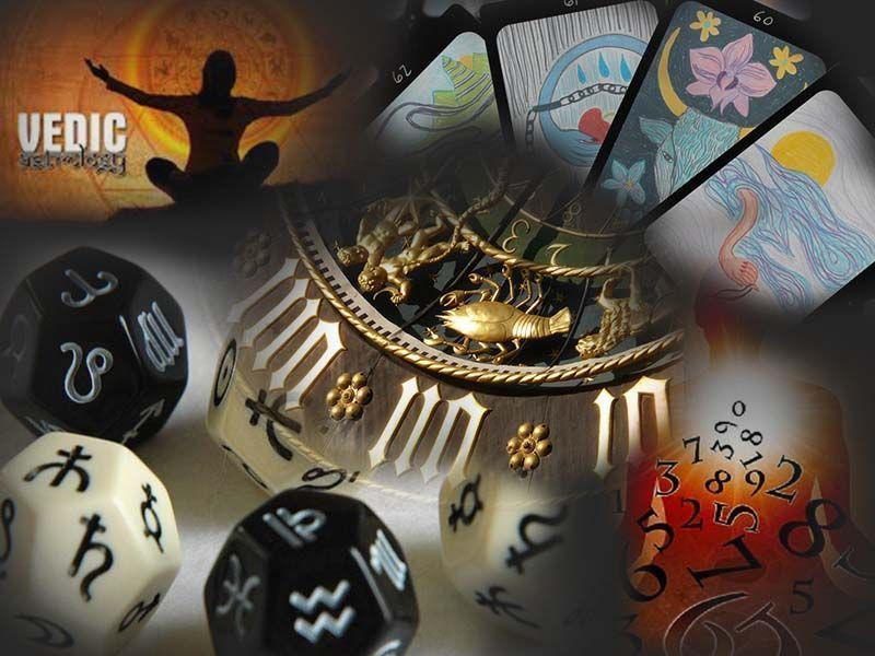 Famous Astrologer Who Provides Vedic Astrology Report Western