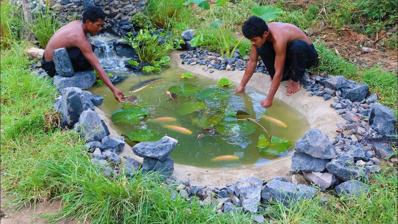 Build Stone Fish Pond in 2020 Fish pond, Fish ponds, Pond