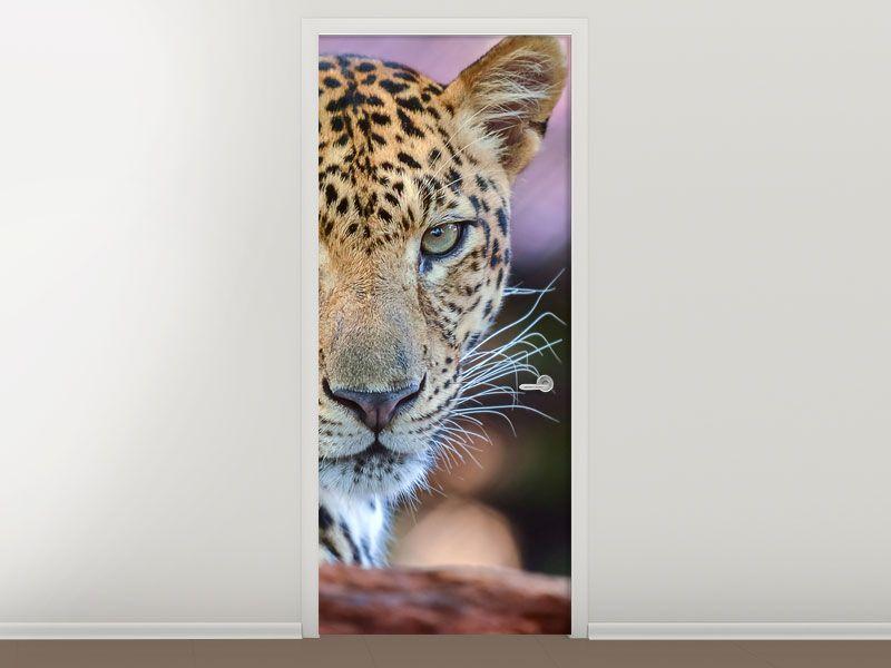 Tür #Tapete Leopard   Türtapeten Raubtiere   Pinterest   Leopards