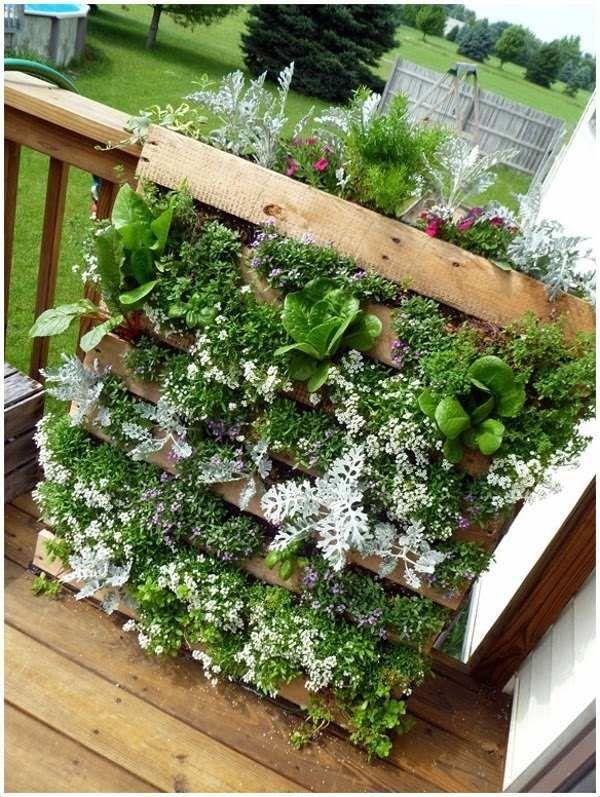 Herb Garden Ideas For A Balcony vertical green wall herb garden ideas small balcony decorating