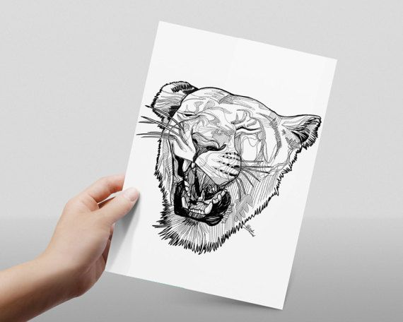 Line Drawing Of Lion : Best animals images animal drawings draw