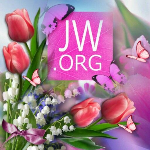 Www Jw Org Imagenes Testigos De Jehova Jw Testigos De Jehova Testigos De Jehova