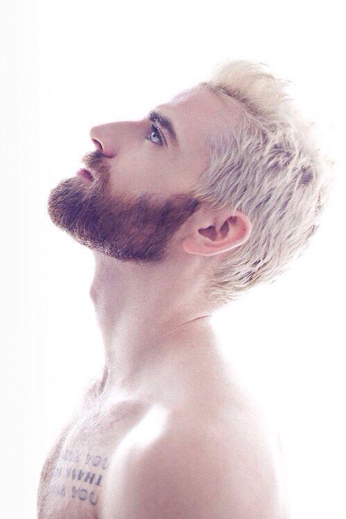 Blonde Hair Brown Beard Beard No Mustache Mens Hairstyles