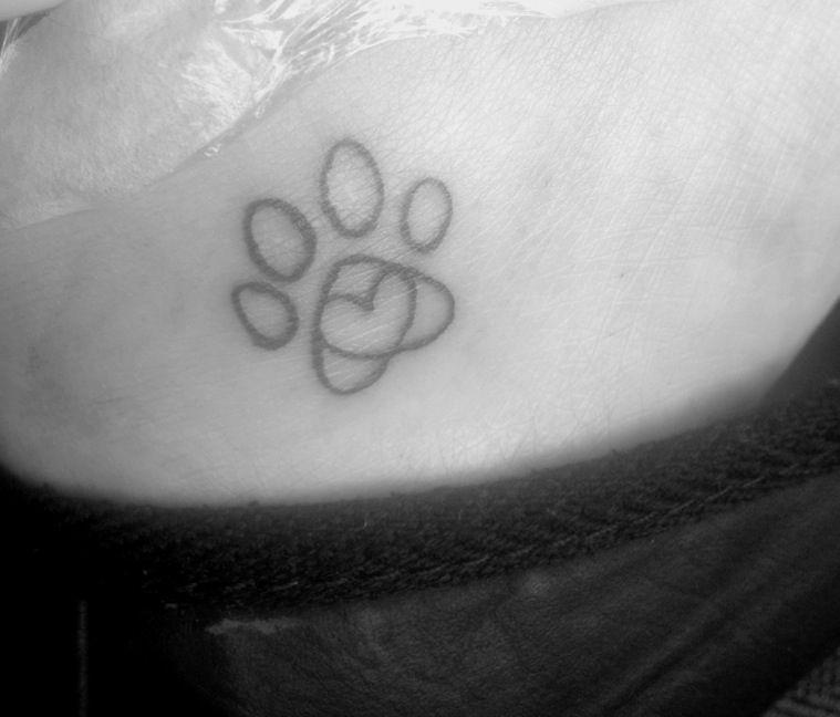 Heart Shaped Paw Prints Tattoos: Paw Print And Heart Tattoo, My First Tattoo!