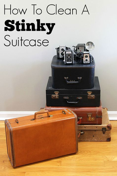 fa04136f22ecf452600836ebec38e984 - How To Get Rid Of Musty Smell In Old Suitcase