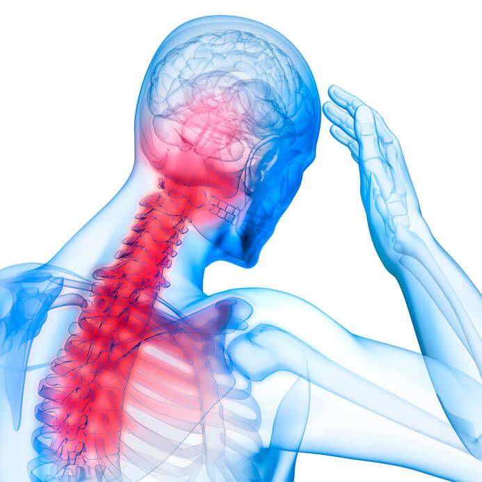 Anatomie, Bau und Funktion der Halswirbelsäule | Atlastherapie: Die ...