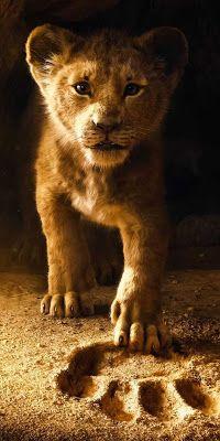 Papel de Parede Rei Leão 2019 Simba para Celular e iPhone