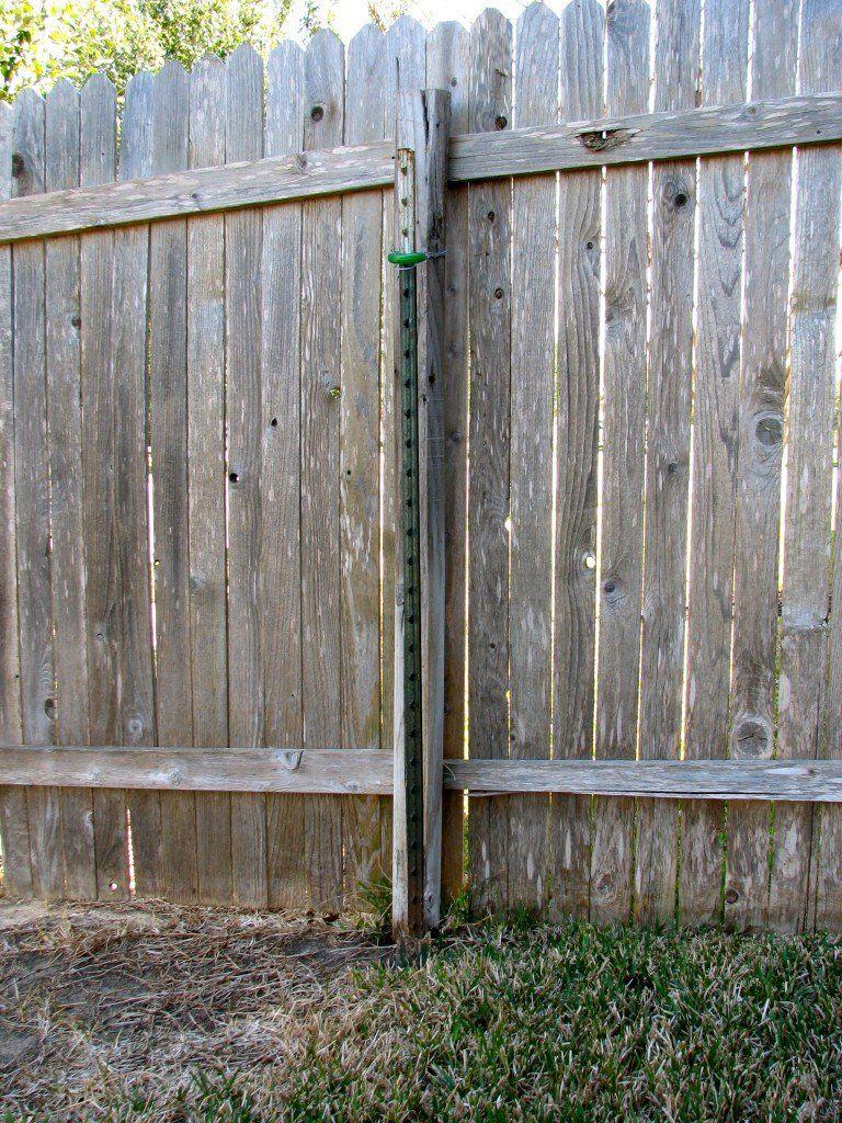 Broken Fence Post With Steel T Post Helper Post Providing Stability Fence Post Fence Post Repair Metal Fence Posts