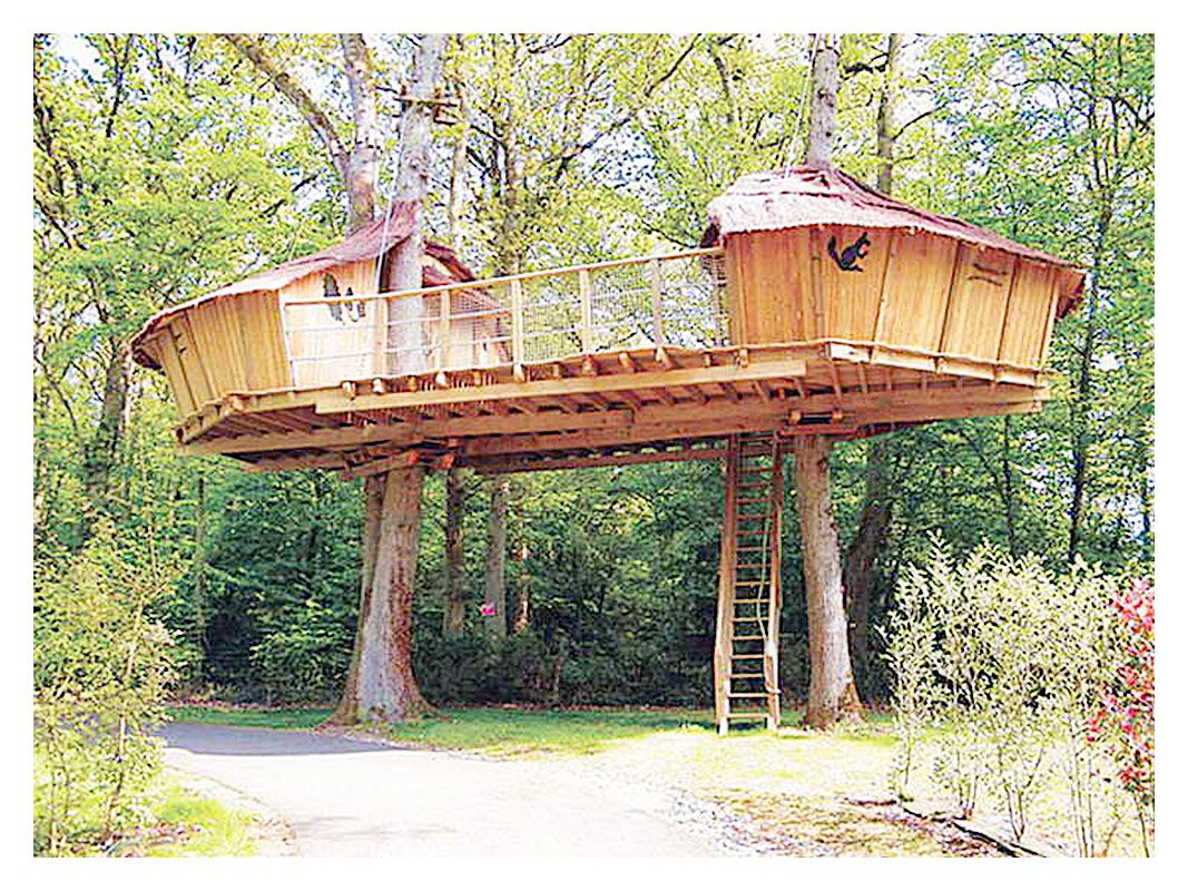 easy tree house designs. nice Great Tree House plans and designs  If you have a large tree in front