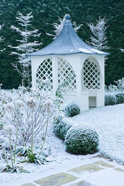 pavilion and box ball hedges give the garden winter outbuildings rh pinterest com