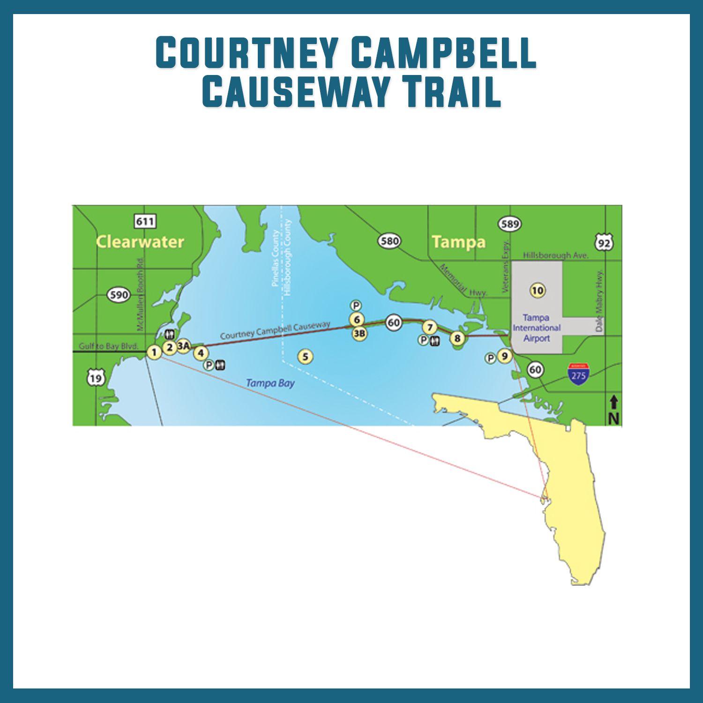 Courtney Campbell Causeway Bike Trail Tampa Bay University Bike