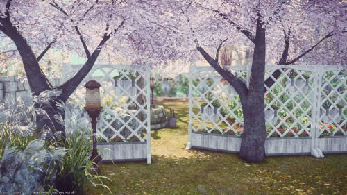 I Re Did My Yard And Made A Privacy Fence I Know Aesthetic Art Bride Yard