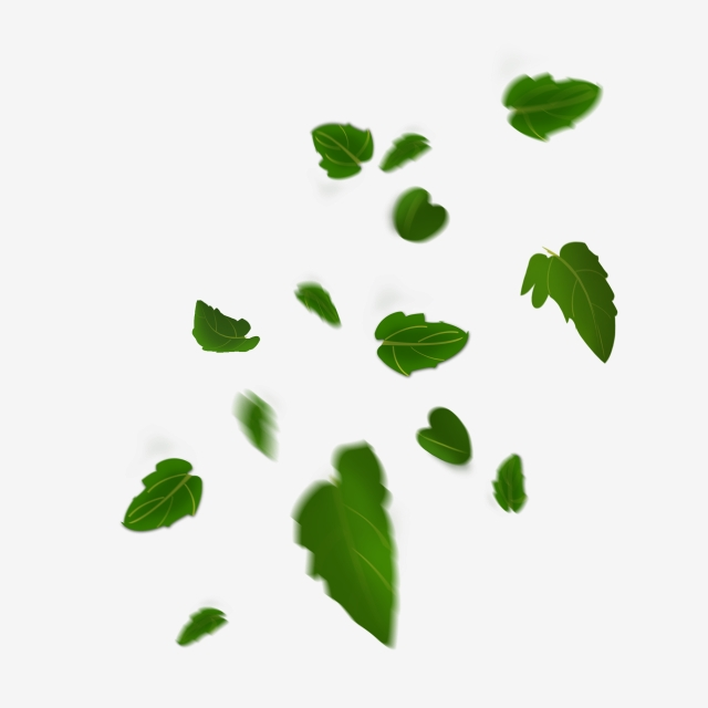 Floating Material Green Leaves Falling Free Buckle Green Leaf Leaves Leaf Png Transparent Clipart Image And Psd File For Free Download Floating Material Green Leaves Autumn Leaves
