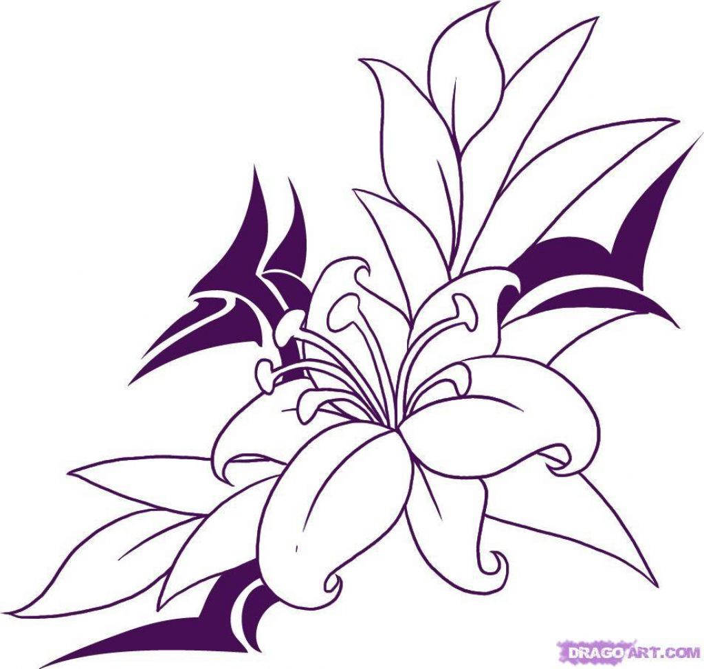 Image Result For Easy Pencil Drawings Of Flowers And Vines