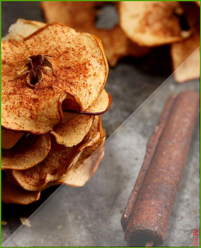Calorie Recipes Cinnamon Apple Slivers Air Fryer Recipes