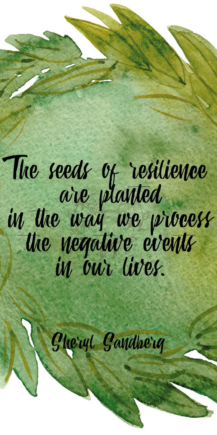 Quotes About Planting Seeds For Life Image Result For Quotes About Life For Counseling  Quotes To Hold