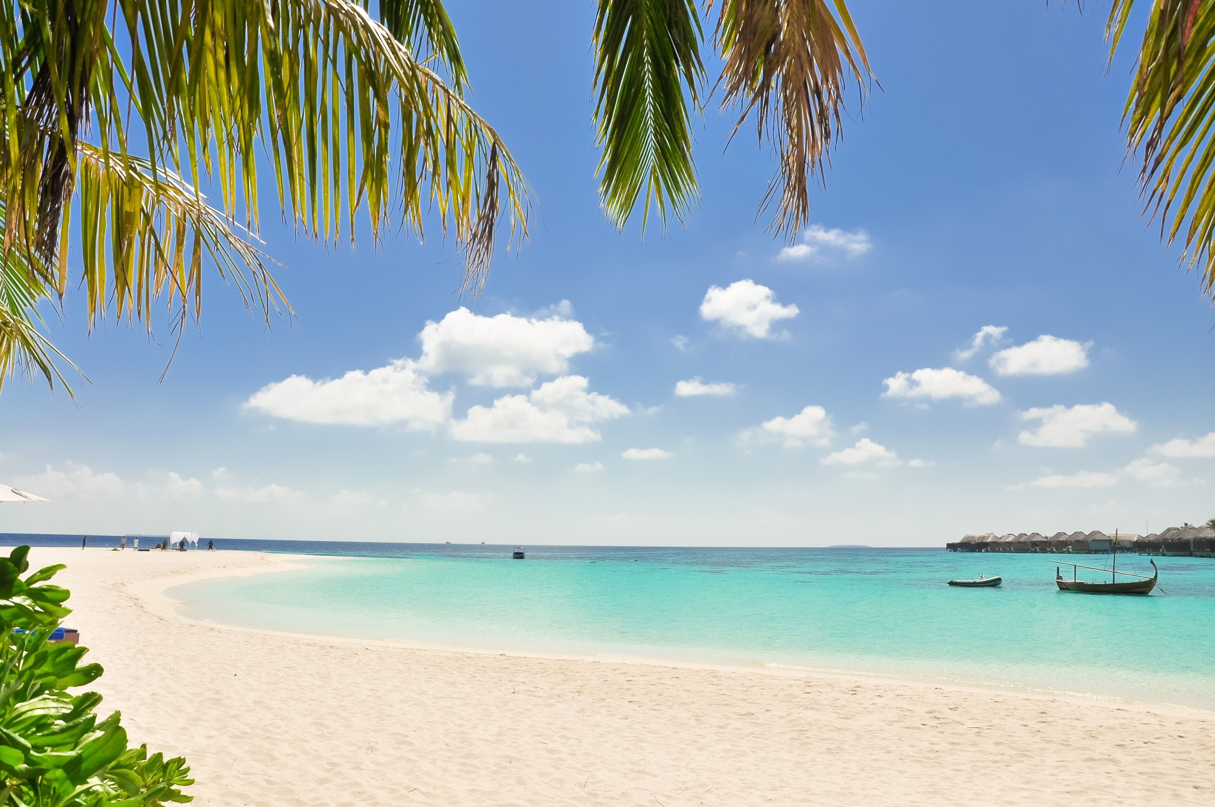 Beach Resort Maldives Overwater Villas Beach Wallpaper Backgrounds Free Background Images