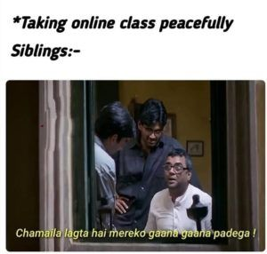 Siblings During The Online Class