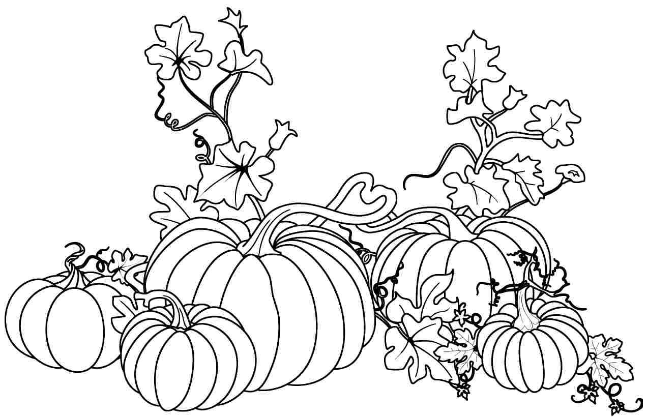 Coloring Pages Fall Pumpkin Coloring Pages fall pumpkin coloring pages futpal com pinterest u2022 the worldu002639s catalog of ideas