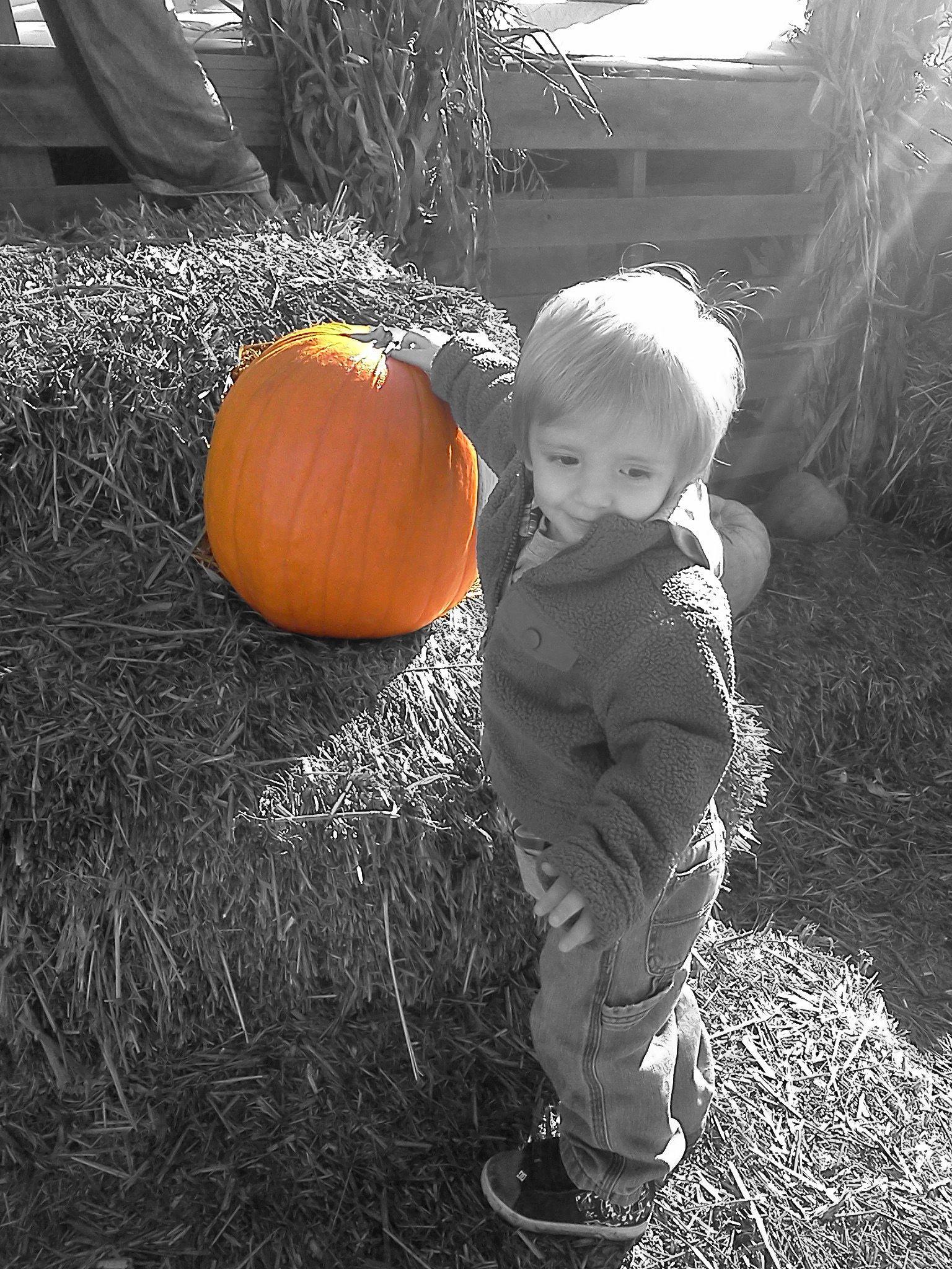 Ethan at Indigo Farms
