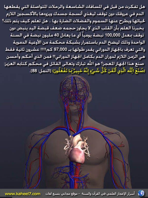 صورة وآية رحلة الدم Islamic Nasheed Islam Quran