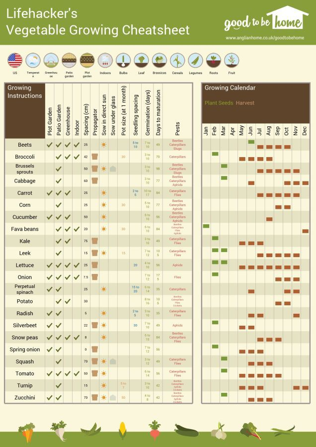 Create  personalized vegetable gardening cheat sheet with this tool via lifehacker also rh pinterest