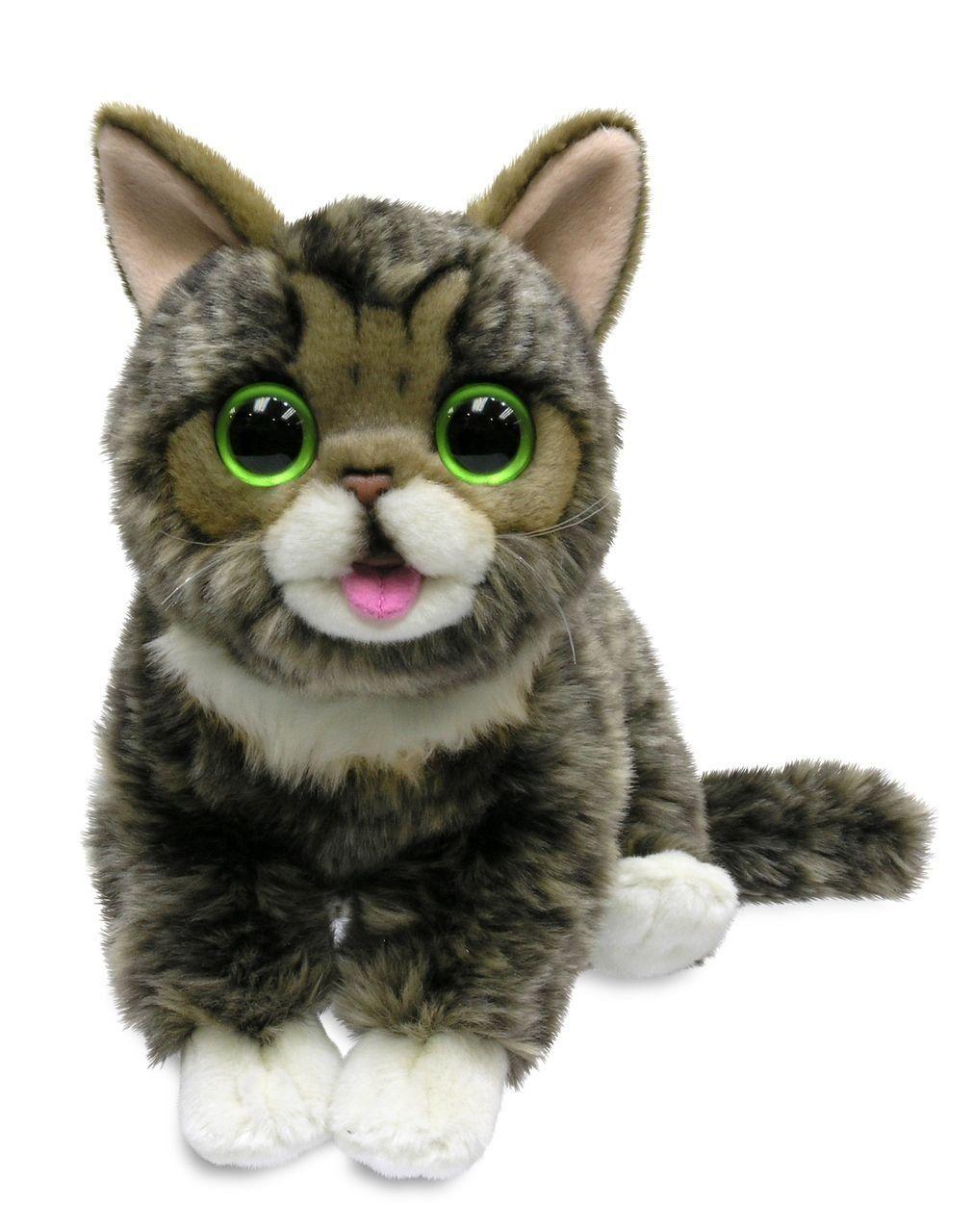 Amazon Com Cuddle Barn Lil Bub Adorable Kitten Cat Plush Toy Cb8240 Toys Games Lilbub Cat Plush Toy Cat Plush Kitten Toys