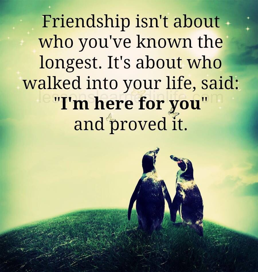 Quotes About Friendship And Love And Life For The Love Of My Life  Quotes  Pinterest  Friendship