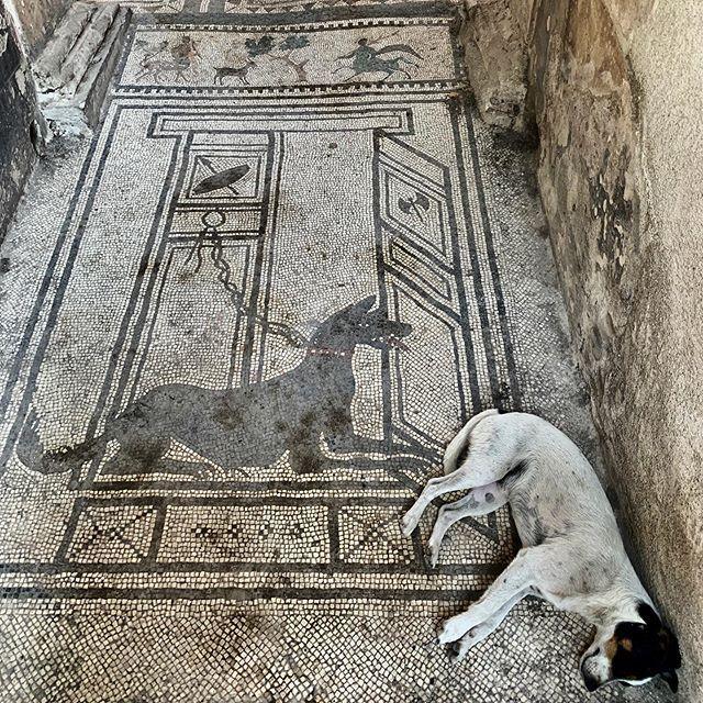 Pompeii Hashtag On Instagram Photos And Videos Rome Antique