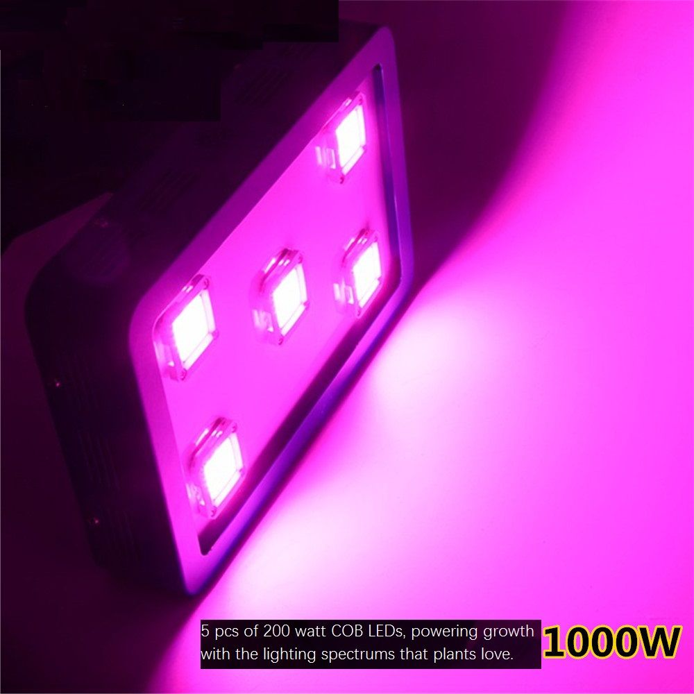 1 000w Led Grow Light With Cob Chip On Board Technology Red Blue 8 1 Affiliate Led Grow Lights Led Lights Led