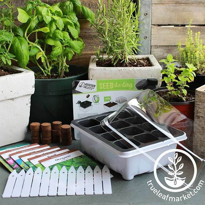 Seed Starter Kit Culinary Herb Lean And Green Seed Starter