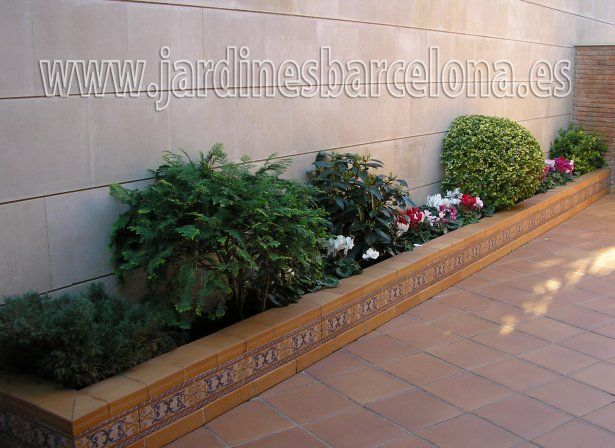 Dise o de jardines peque os jardines pinterest patios gardens and small places - Diseno jardines pequenos ...