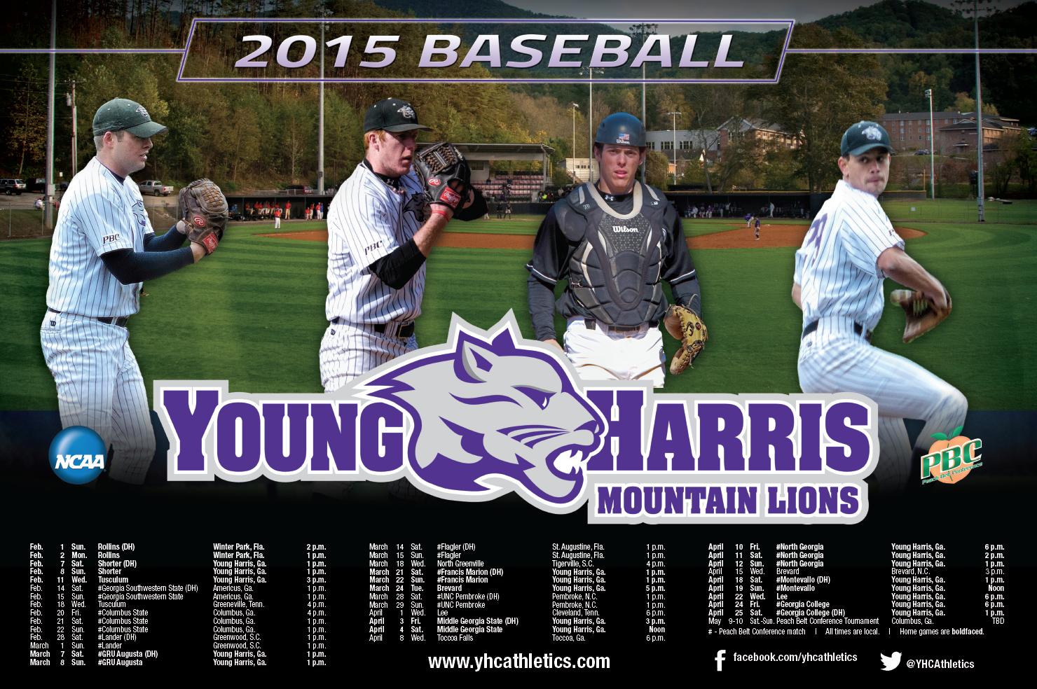 Young Harris Baseball Poster Baseball Posters Young Harris Baseball