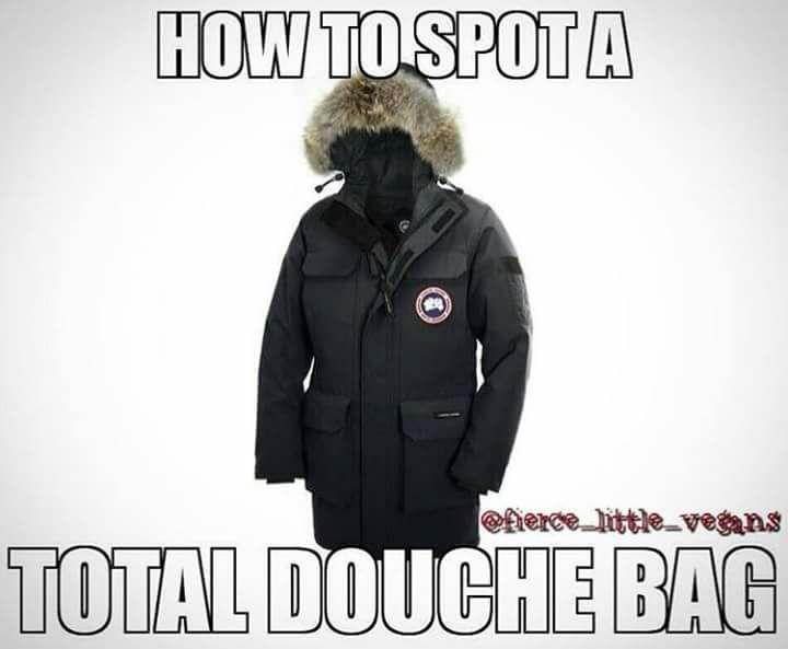 canada goose jacket meme