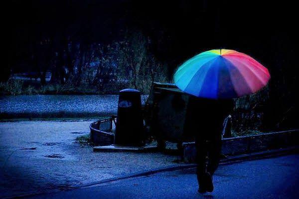 Galeria de fotos para tu blog o webpage: Raining Day-Bajo la lluvia fotos