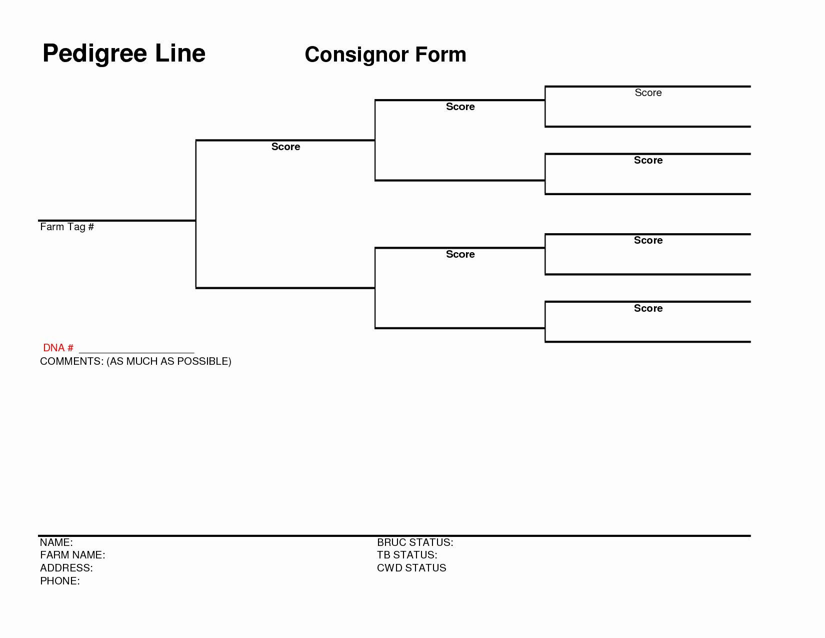 Free Pedigree Chart Template Fresh Lds Pedigree Chart