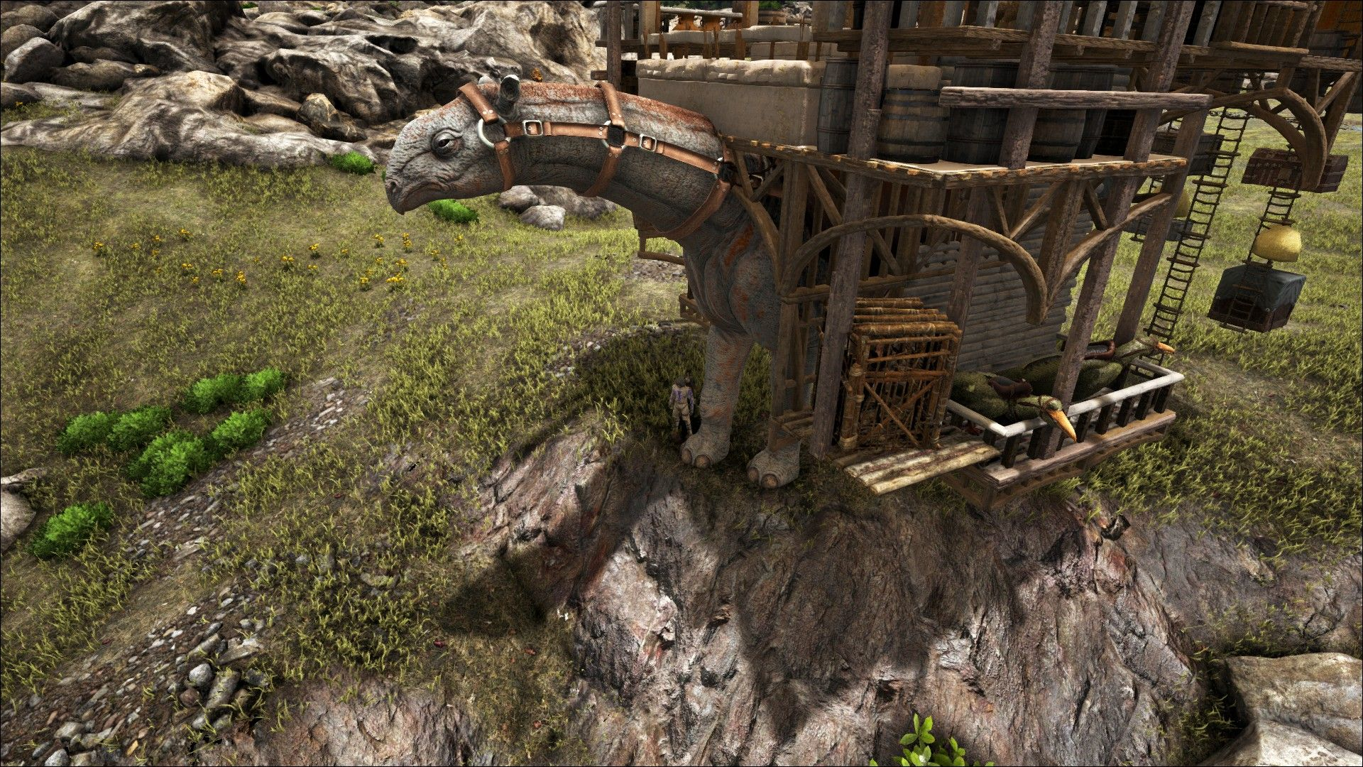 Exceptional Ark, Paracer Platform Base, Trader, Nomadic Tribe, Platform Base Design