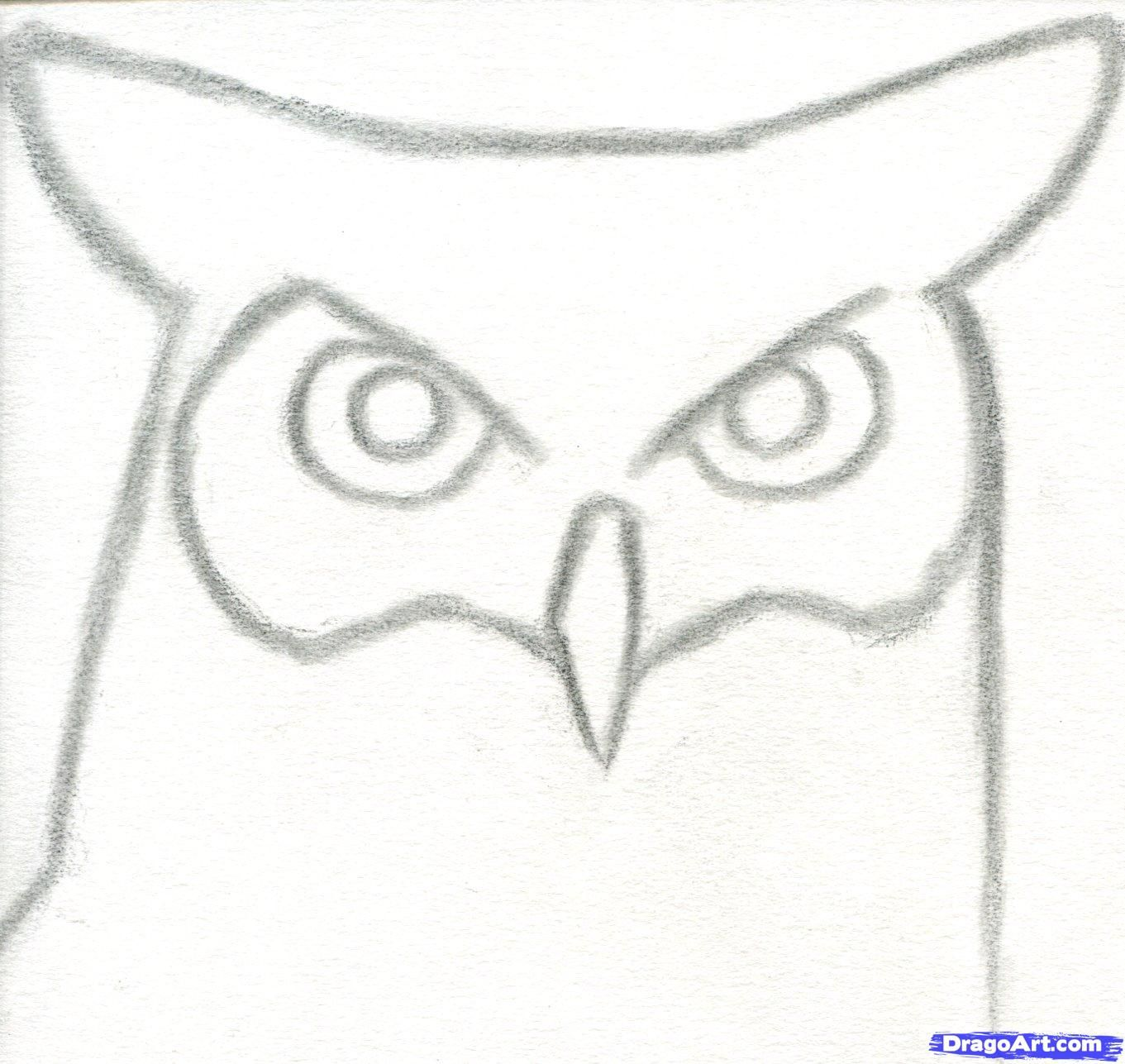 How to draw a great horned owl step by step birds for Thing to draw