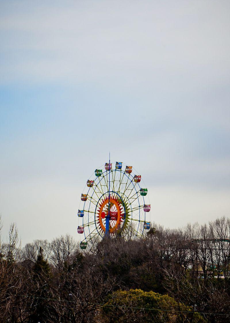 Ferris Wheel Weeeeee!