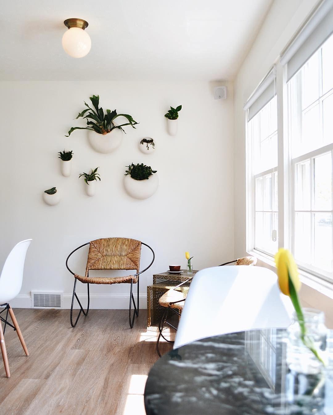 5 Vertical Vegetable Garden Ideas For Beginners: Vegetable Gardening Tips And Tricks