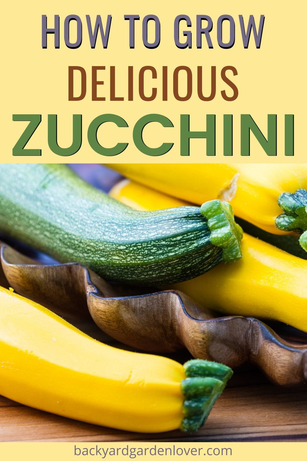 How To Plant And Grow Zucchini Guide To A Bountiful Harvest Growing Zucchini Grow Zucchini Zucchini Growing Backyard garden how to zucchini
