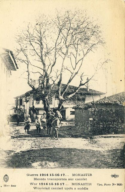 Transfer Wounded In Saddle In The Background Is Seen The Oldest Tree In The City Called Chinar Still Existing Today The House In The Bitola Macedonia Ww1
