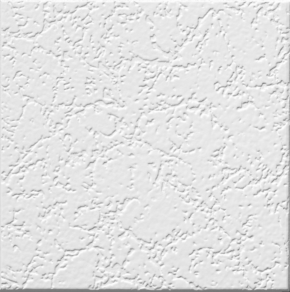 258 grenoble is a paintable ceilings by armstrong for the look of grenoble is a paintable ceilings by armstrong for the look of a traditional heavily textured ceiling our x grenoble homestyle ceiling tile is for you dailygadgetfo Gallery