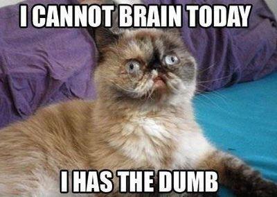 fa162bc1b2c40a14a099002078f5bb33 lucypurrs666 with fuck all sleep, fibro flares, chronic,Chronic Illness Cat Meme
