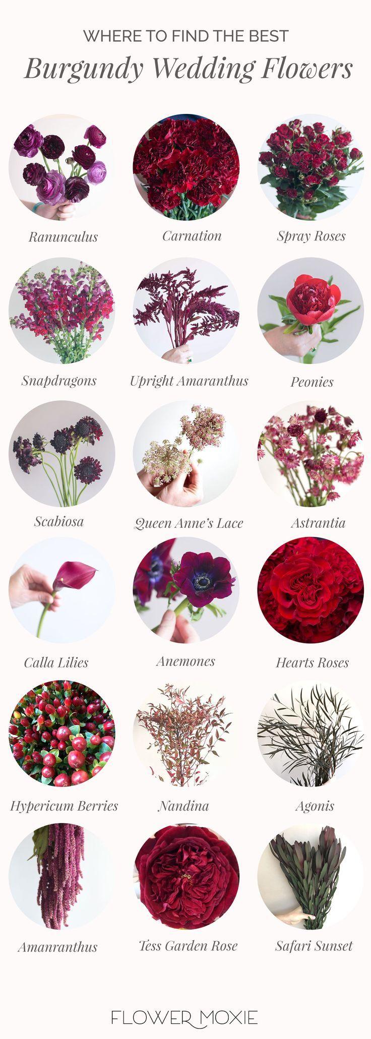 Flowermoxie Bulk Wedding Flowers Online Fresh Flowers For Weddings In 2020 Online Wedding Flowers Bulk Wedding Flowers Fresh Wedding Flowers
