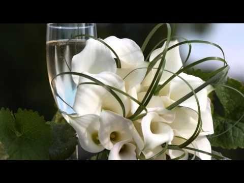 Velvet Dreamer / Tim Gelo  - White Wine of the Moon *k~kat jazz café* Th...