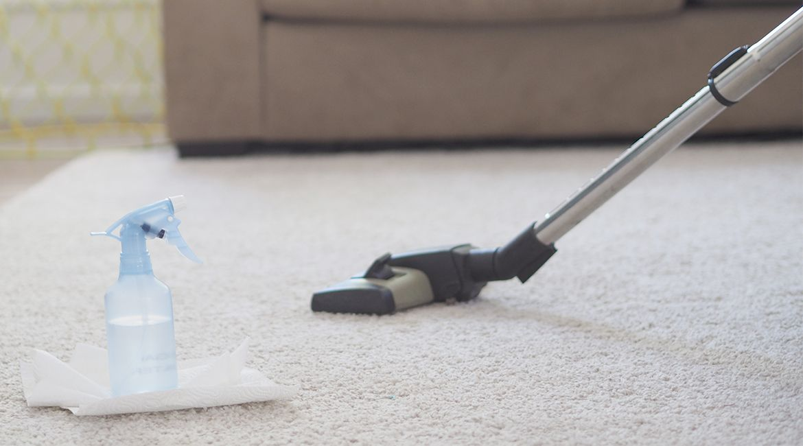 Homemade Carpet Cleaner Pet Stains Carpet cleaning